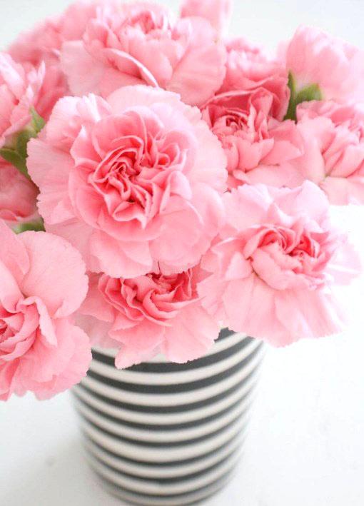 Картина по номерам 40x50 Красивые розы в чёрно-белой вазе